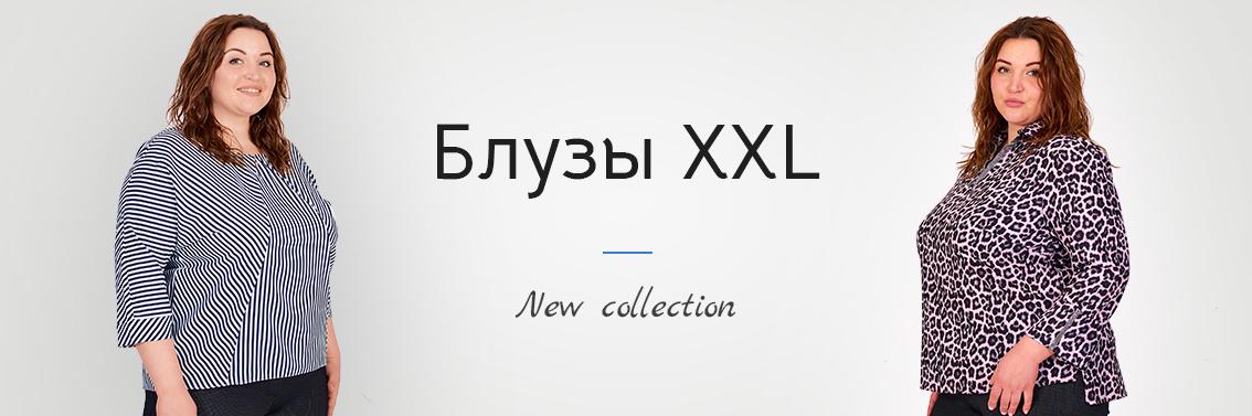 Блузы XXL+